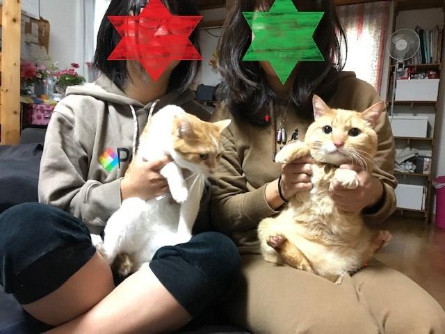 マミーちゃん 新生活スタート!_f0242002_19100894.jpg