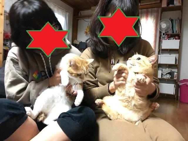マミーちゃん 新生活スタート!_f0242002_19101021.jpg