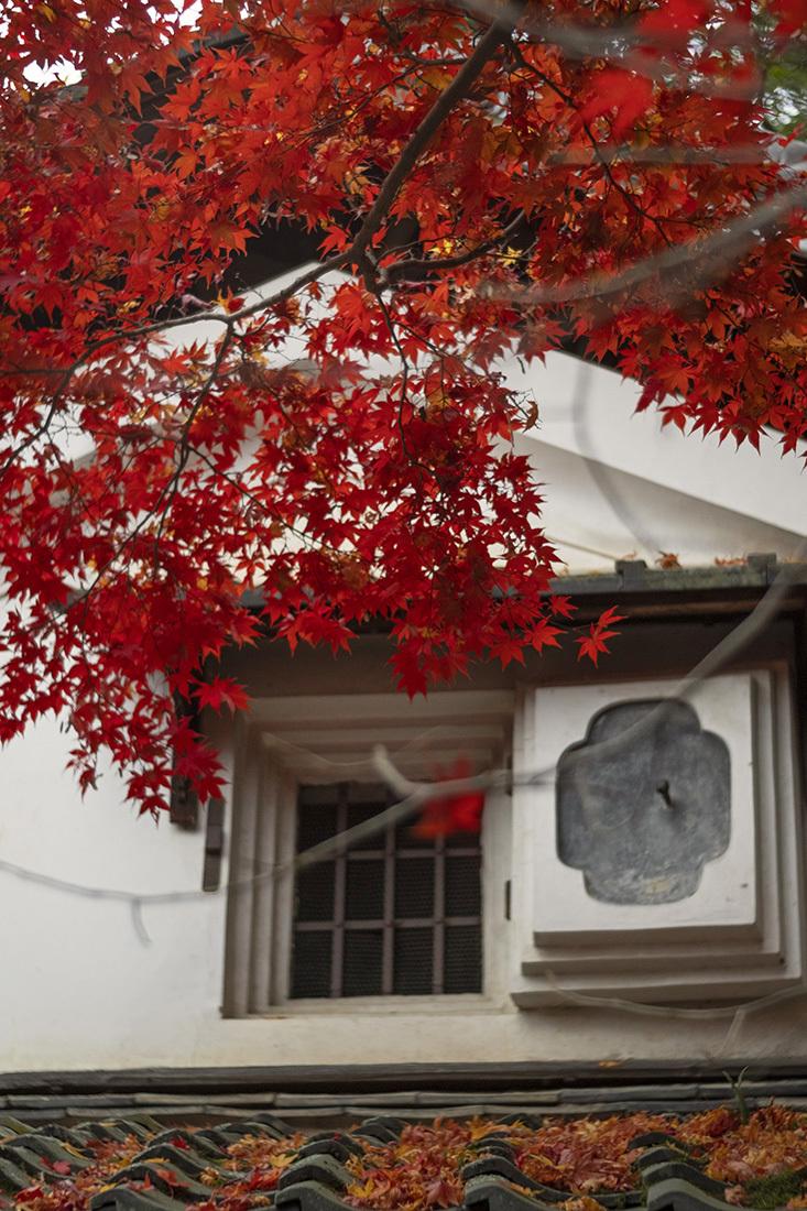 詩仙堂(1)_b0221605_18513285.jpg