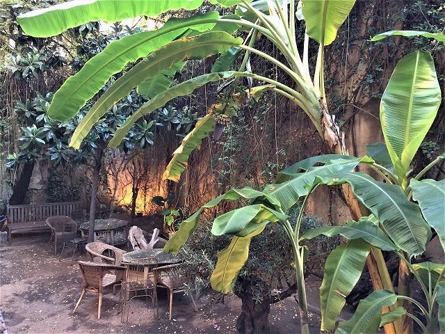 レストラン Boca Grande_b0064411_23192084.jpg