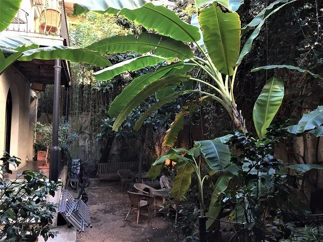レストラン Boca Grande_b0064411_23192092.jpg