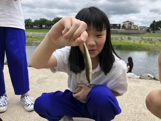 2019年講座 アユ釣り 山菜採り_b0083415_15234683.jpg
