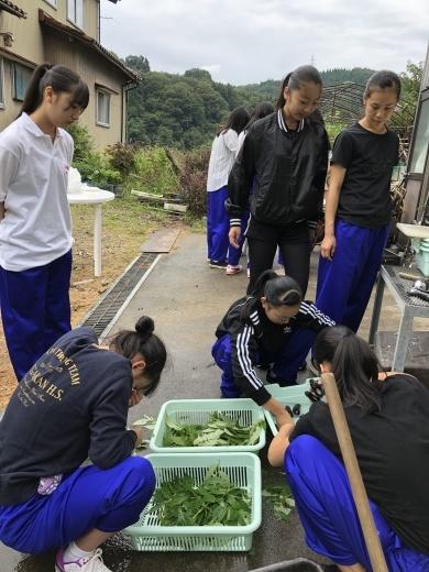 2019年講座 アユ釣り 山菜採り_b0083415_15284481.jpg