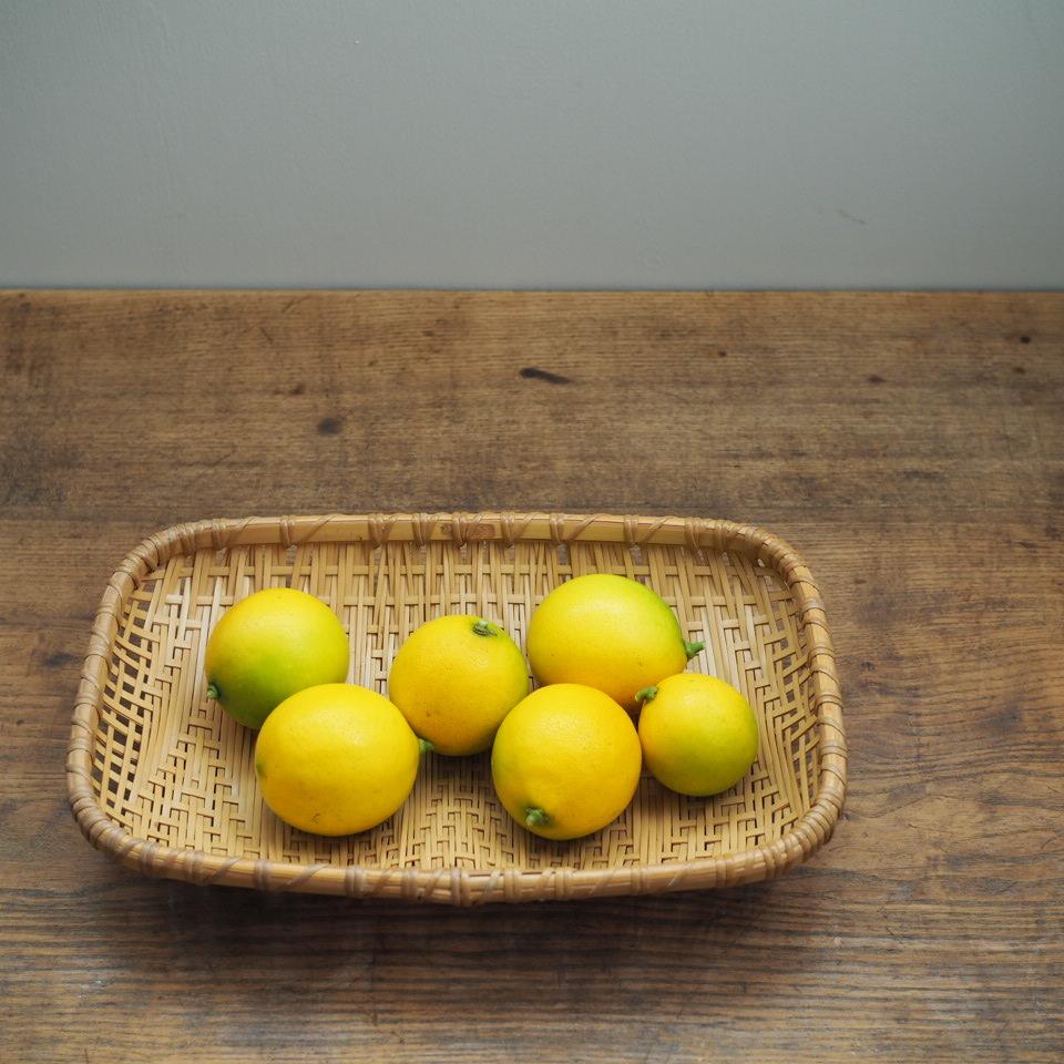 レモンを収穫_b0206421_17413667.jpg