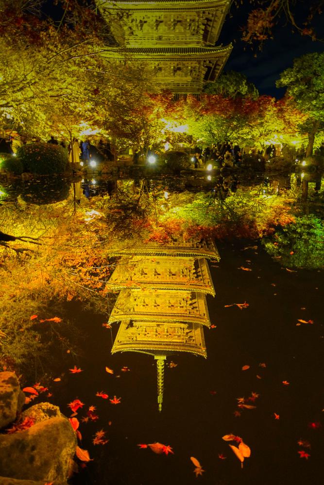 京都2019 その2_c0220824_11140836.jpg