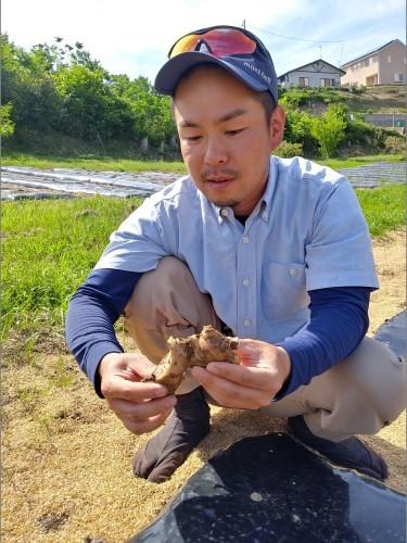 """Cha@i 紅茶×しょうが の しょうが粉は、陸前高田""""三陸ジンジャー""""菊地康智さんの生姜です。_d0007735_11101434.jpg"""