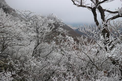 令和元年・大船山御池の霧氷に大感動!_e0272335_20385473.jpg