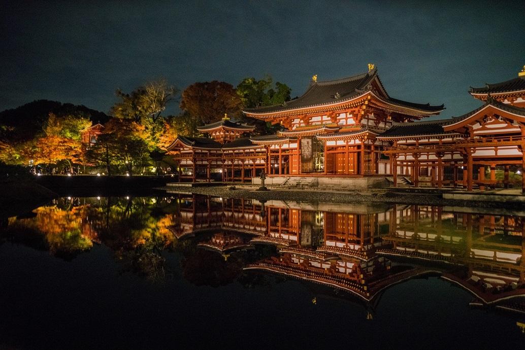 2019京都紅葉~平等院鳳凰堂ライトアップ_e0363038_12081383.jpg