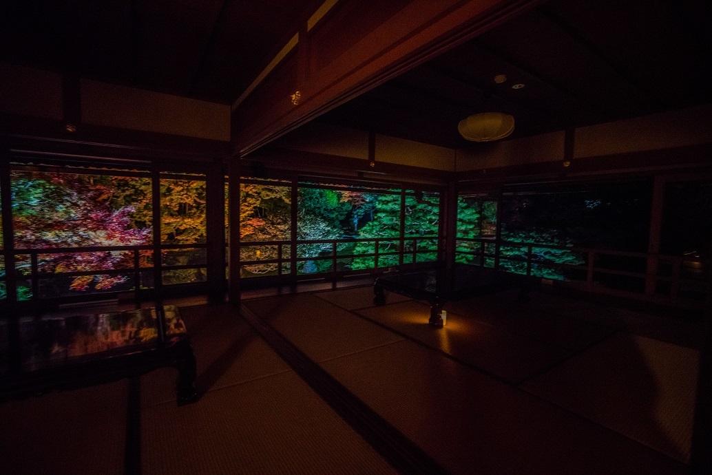 2019滋賀紅葉~旧竹林院ライトアップ_e0363038_15103260.jpg