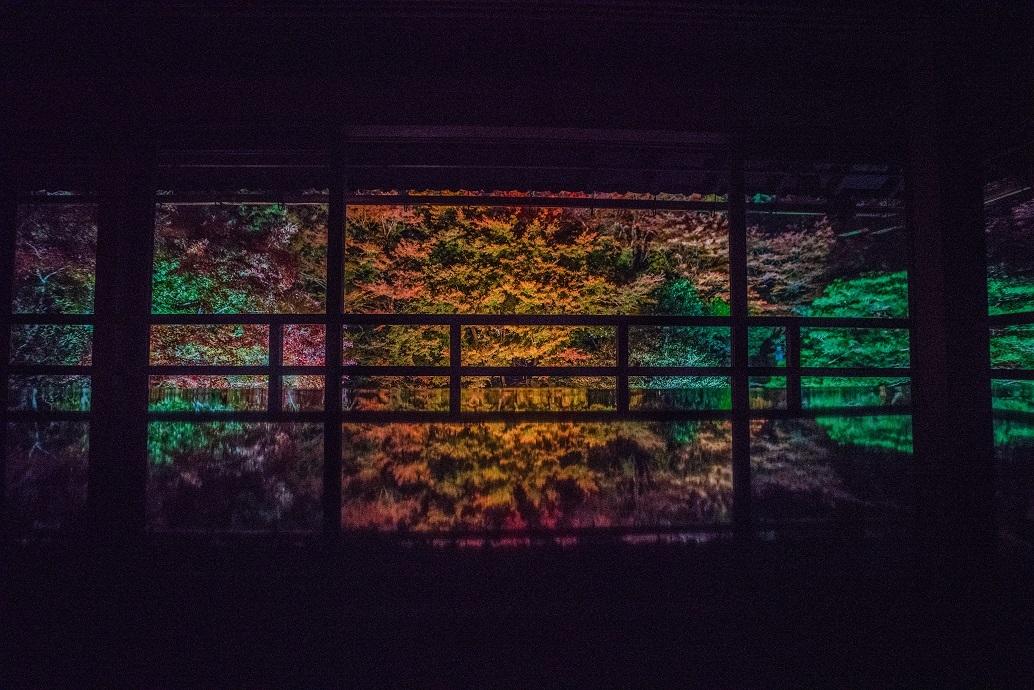 2019滋賀紅葉~旧竹林院ライトアップ_e0363038_15105481.jpg