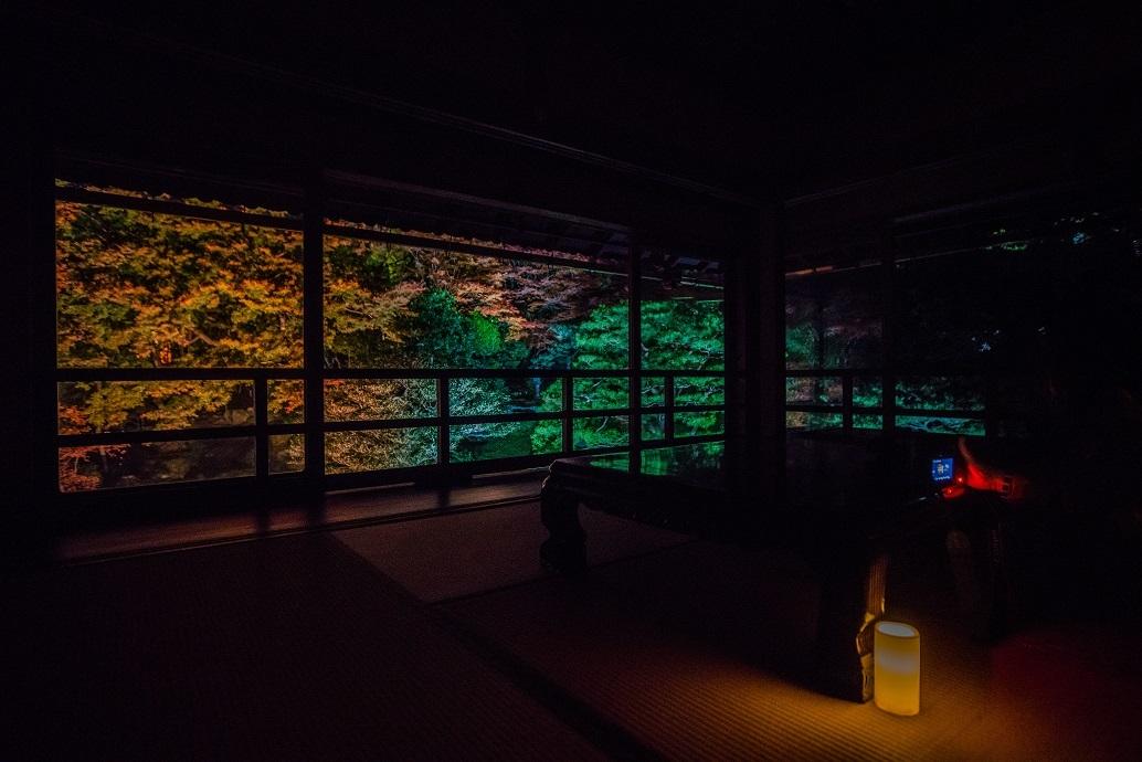 2019滋賀紅葉~旧竹林院ライトアップ_e0363038_15105534.jpg