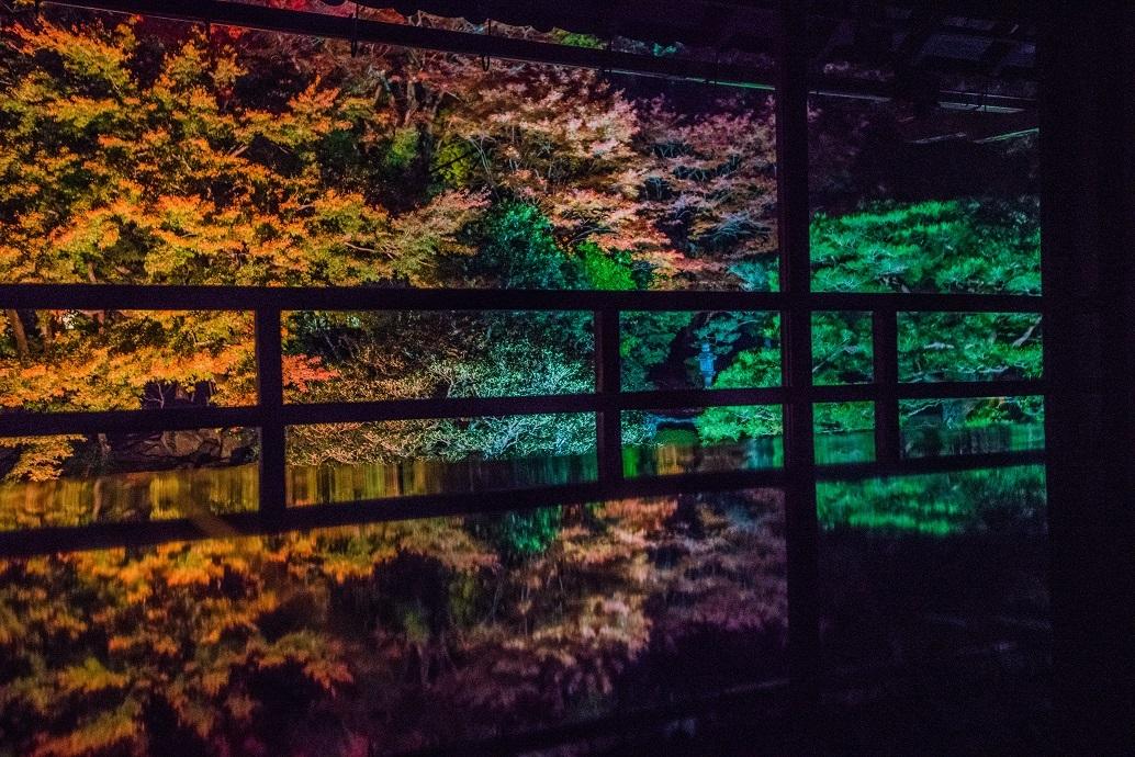 2019滋賀紅葉~旧竹林院ライトアップ_e0363038_15110627.jpg
