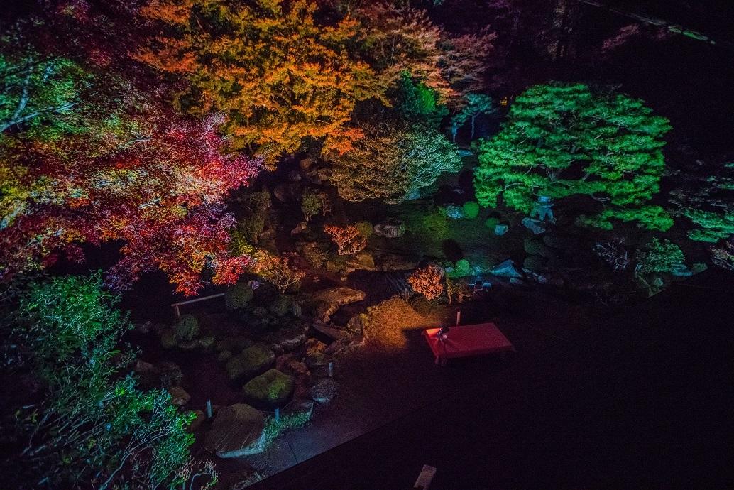 2019滋賀紅葉~旧竹林院ライトアップ_e0363038_15110720.jpg