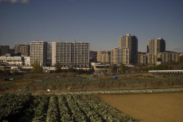 黒川土地改良区 R-D1 インダスター50mm3.5_e0129750_21012991.jpg