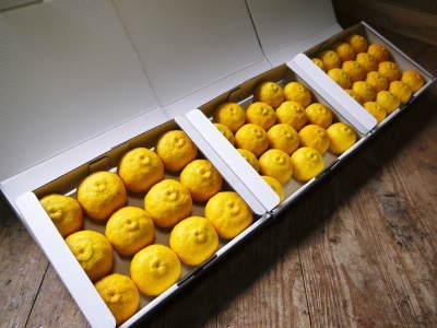 令和元年度の香り高き柚子『あっぱれ』数量限定再入荷します!『冬至用柚子』残りわずかですお急ぎ下さい!!_a0254656_17275084.jpg