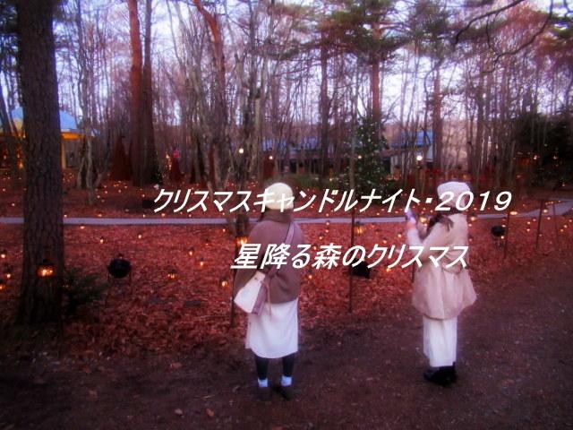 ①星降る森のクリスマス・2019 * 軽井沢 ホテルブレストンコート・館内装飾☆_f0236260_15263072.jpg