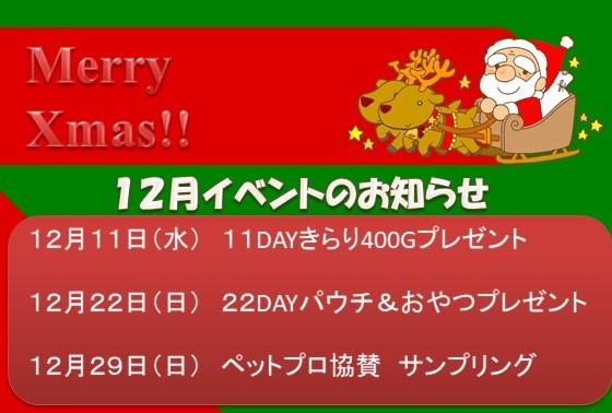 191204 12月イベント告知_e0181866_13530639.jpg
