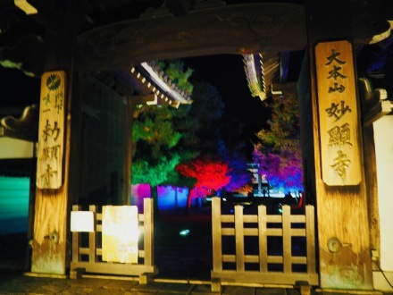 京都の紅葉へ_e0183383_17375531.jpeg