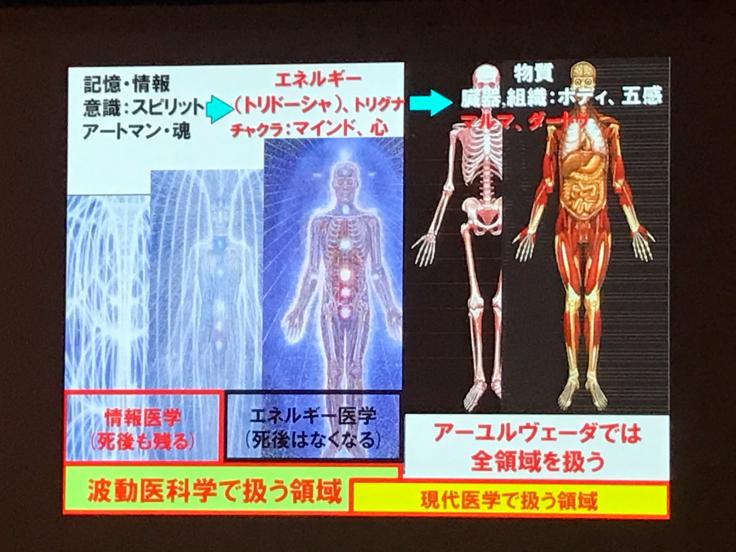 統合医療学会に行ってきました_b0174284_23511564.jpg