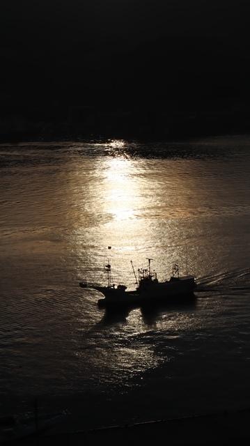 サンマの不漁が食卓を寂しくする。多獲性魚類の美味しさと健康への寄与、サンマ、いわし、サバは大切な栄養剤_d0181492_00364912.jpg