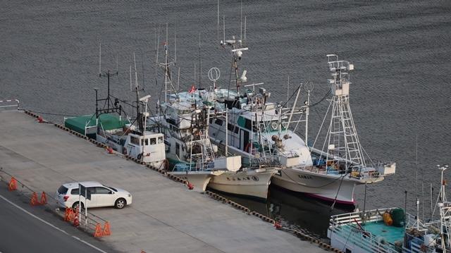 サンマの不漁が食卓を寂しくする。多獲性魚類の美味しさと健康への寄与、サンマ、いわし、サバは大切な栄養剤_d0181492_00370617.jpg