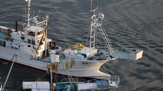 サンマの不漁が食卓を寂しくする。多獲性魚類の美味しさと健康への寄与、サンマ、いわし、サバは大切な栄養剤_d0181492_00382444.jpg