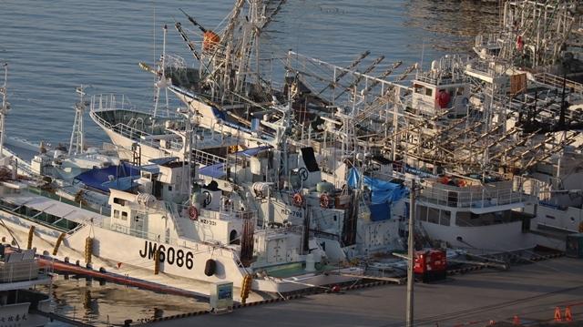 サンマの不漁が食卓を寂しくする。多獲性魚類の美味しさと健康への寄与、サンマ、いわし、サバは大切な栄養剤_d0181492_00384006.jpg
