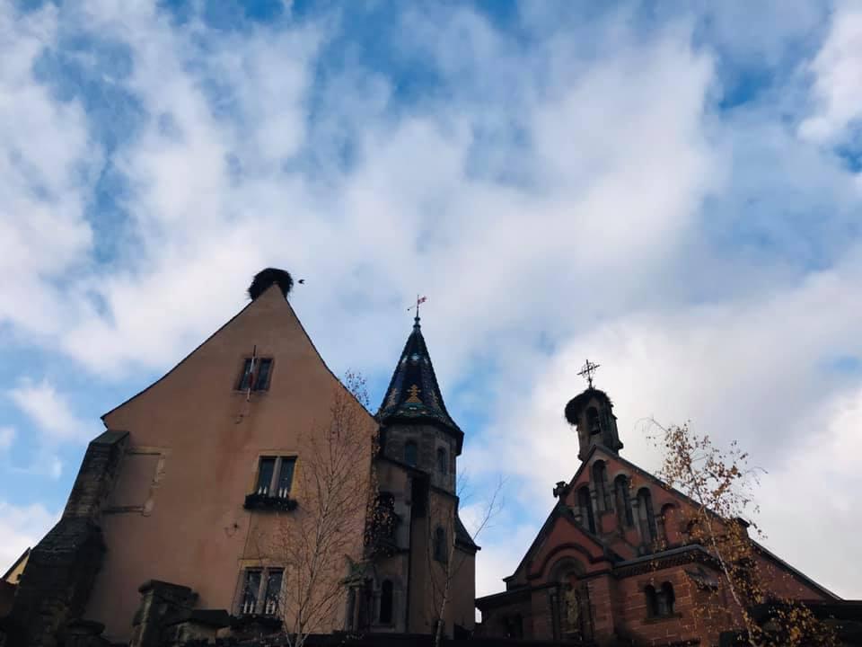 クリスマスマーケット巡りⅡ Eguisheim エギスハイム_a0100596_10402743.jpg