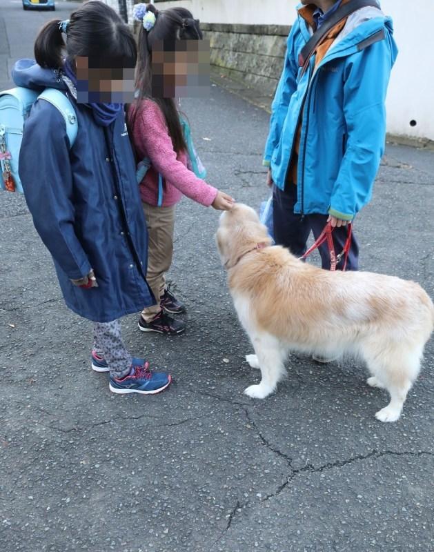 11歳になったウルちゃん♪_b0275998_11072050.jpg