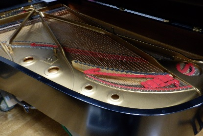 ピアノレッスン1年_e0077899_1318549.jpg