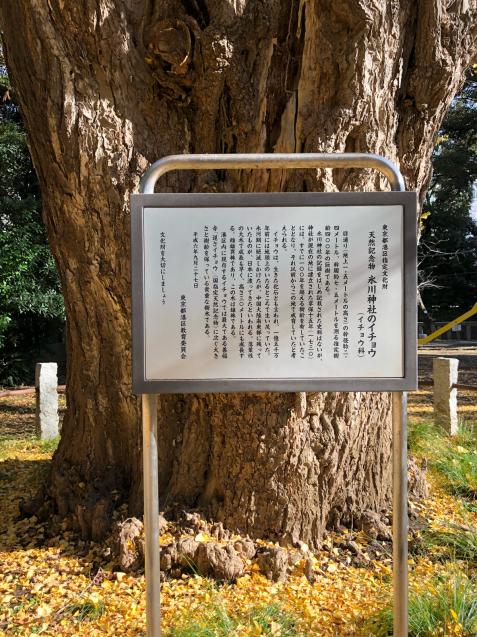 ちょっぴり赤坂散策_f0144003_21573267.jpg