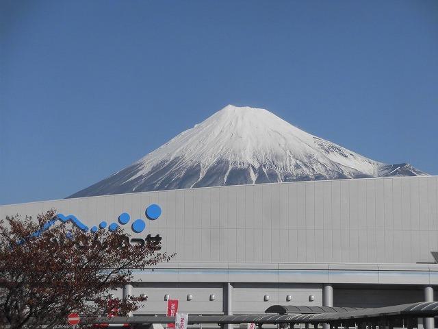 紙ストローと「SDGs」のアイコンが印象的! 第13回富士市環境フェア_f0141310_07500990.jpg