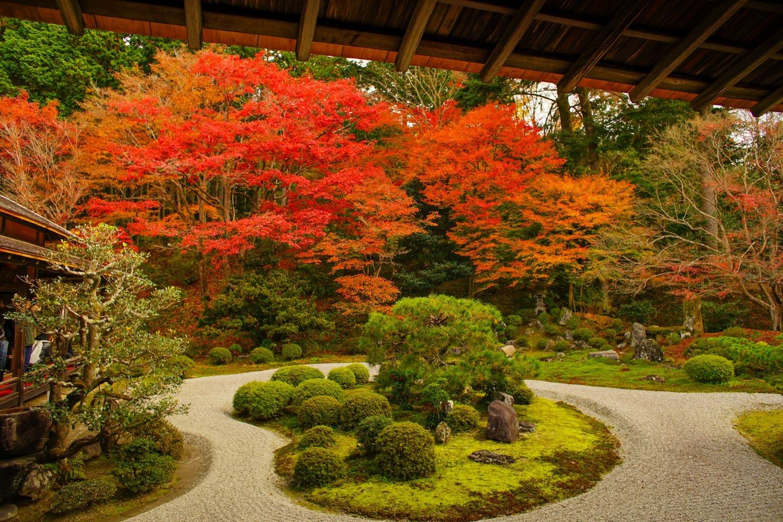 京都2019 その3_c0220824_11404570.jpg