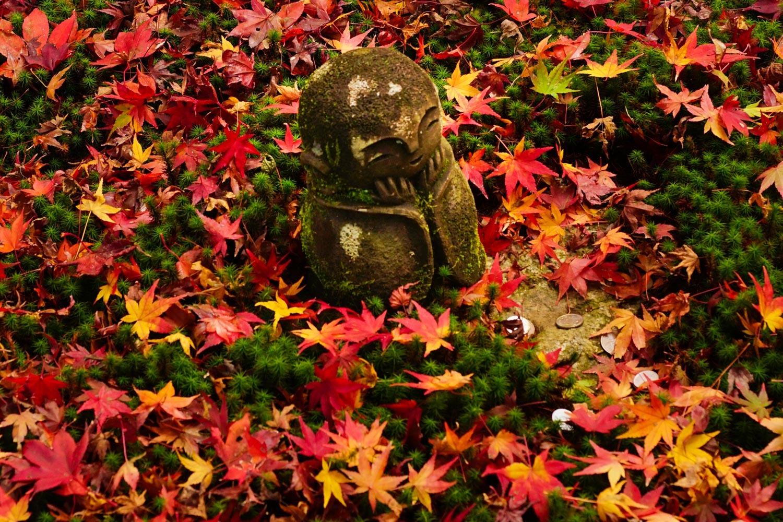京都2019 その3_c0220824_11410241.jpg