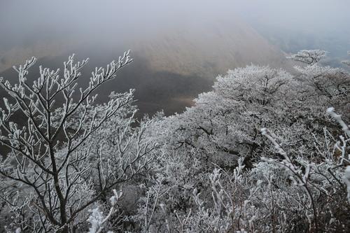 令和元年・大船山御池の霧氷に大感動!_e0272335_5344970.jpg