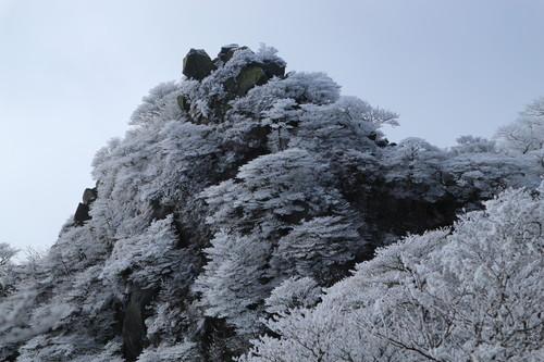 令和元年・大船山御池の霧氷に大感動!_e0272335_543016.jpg