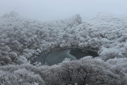令和元年・大船山御池の霧氷に大感動!_e0272335_7273352.jpg