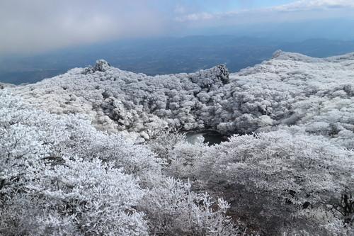 令和元年・大船山御池の霧氷に大感動!_e0272335_7474389.jpg