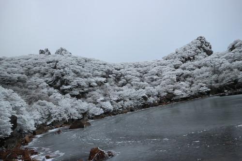 令和元年・大船山御池の霧氷に大感動!_e0272335_8155486.jpg