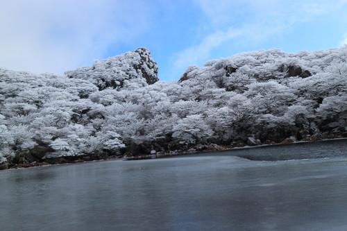 令和元年・大船山御池の霧氷に大感動!_e0272335_861629.jpg