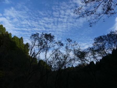初冬の景色_a0123836_17053498.jpg
