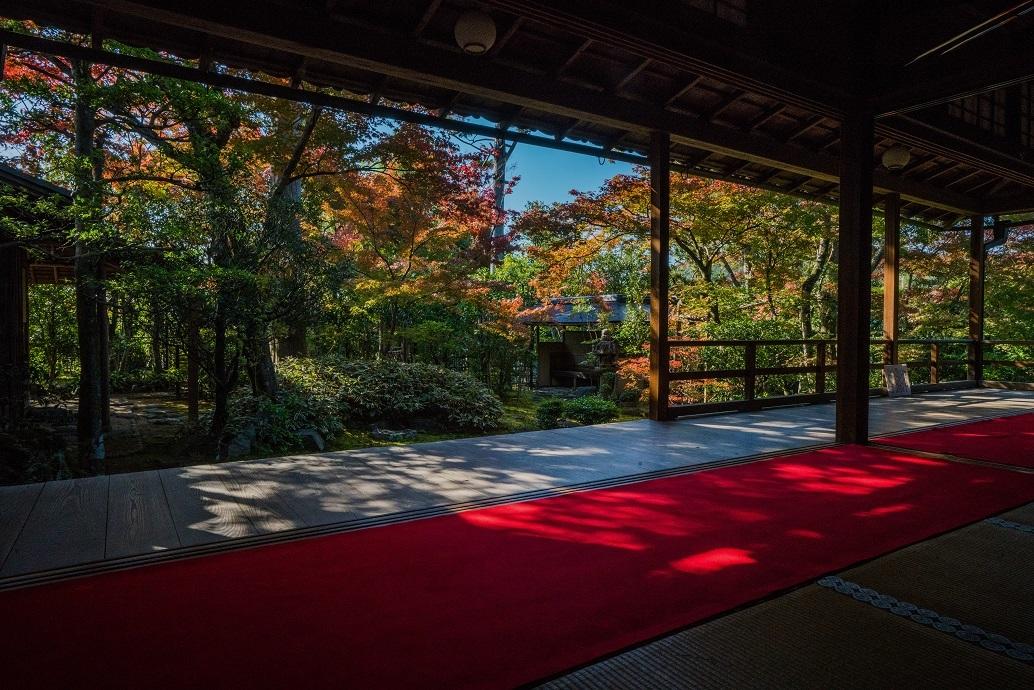 2019京都紅葉~大法院_e0363038_17474449.jpg