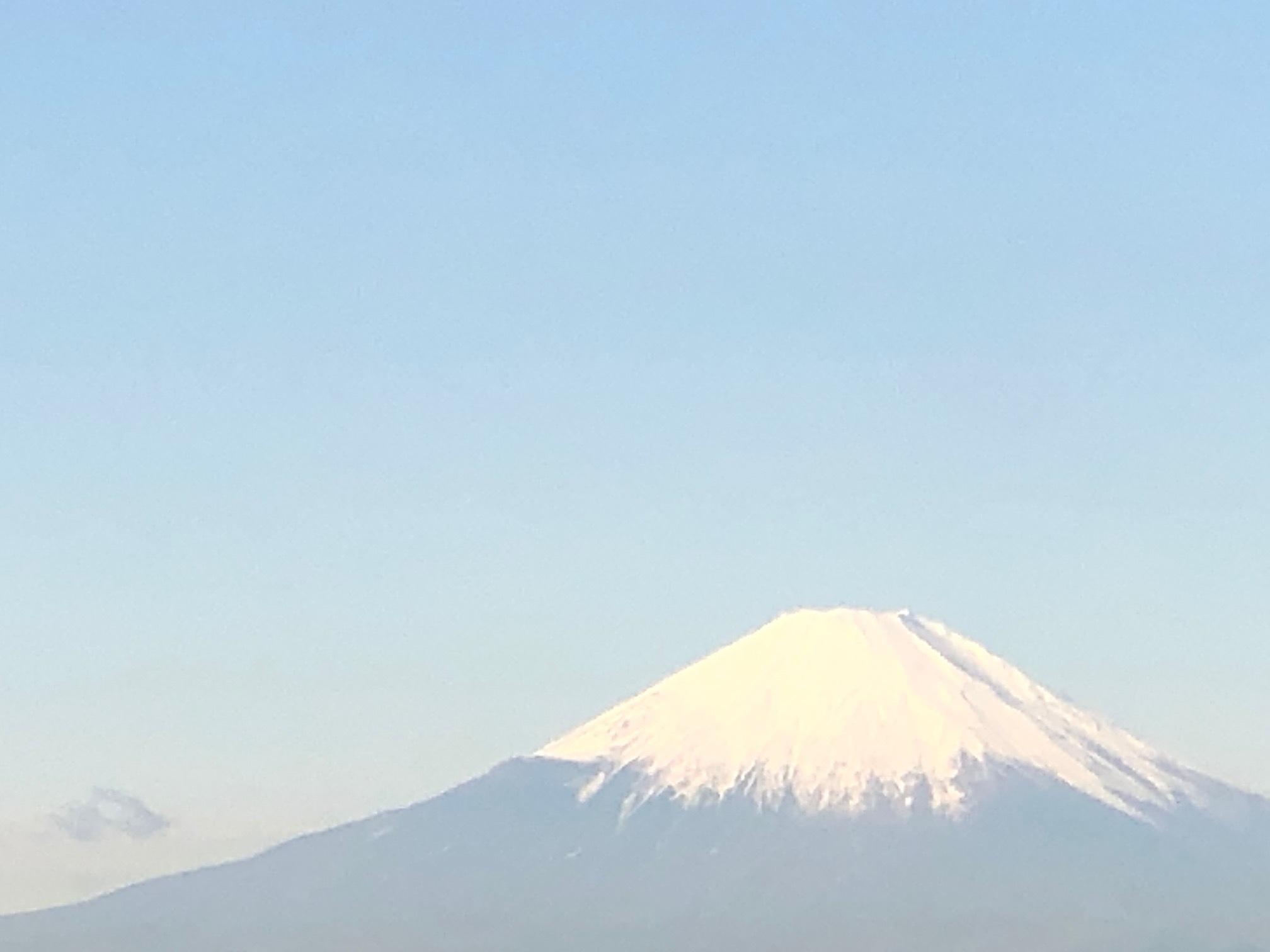 良い天気だ・・・・雪富士とジョイア畑_c0222448_12583835.jpg