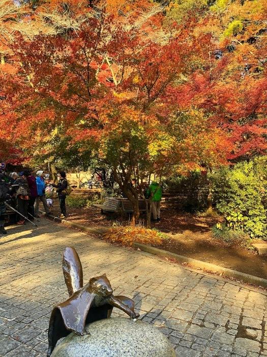 紅葉の高尾山へ🍁_a0092659_16532921.jpg