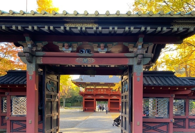 around walk  根津神社とその周辺_a0165160_17122060.jpg