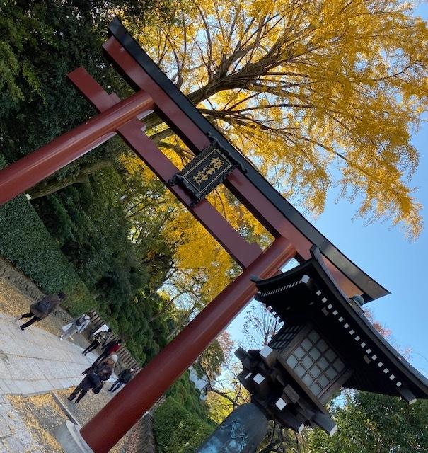 around walk  根津神社とその周辺_a0165160_17154337.jpg