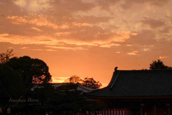 京都 平安神宮**_d0344864_19335294.jpg