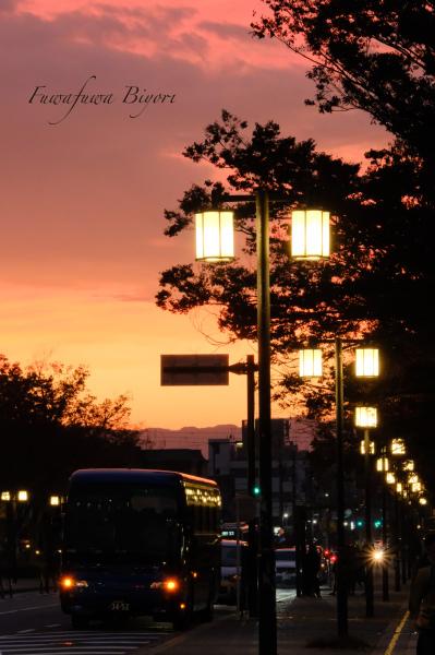 京都 平安神宮**_d0344864_19344213.jpg