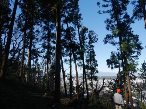 富士、丹沢、男体山一望の可能性12・4六国見山手入れ_c0014967_17070524.jpg
