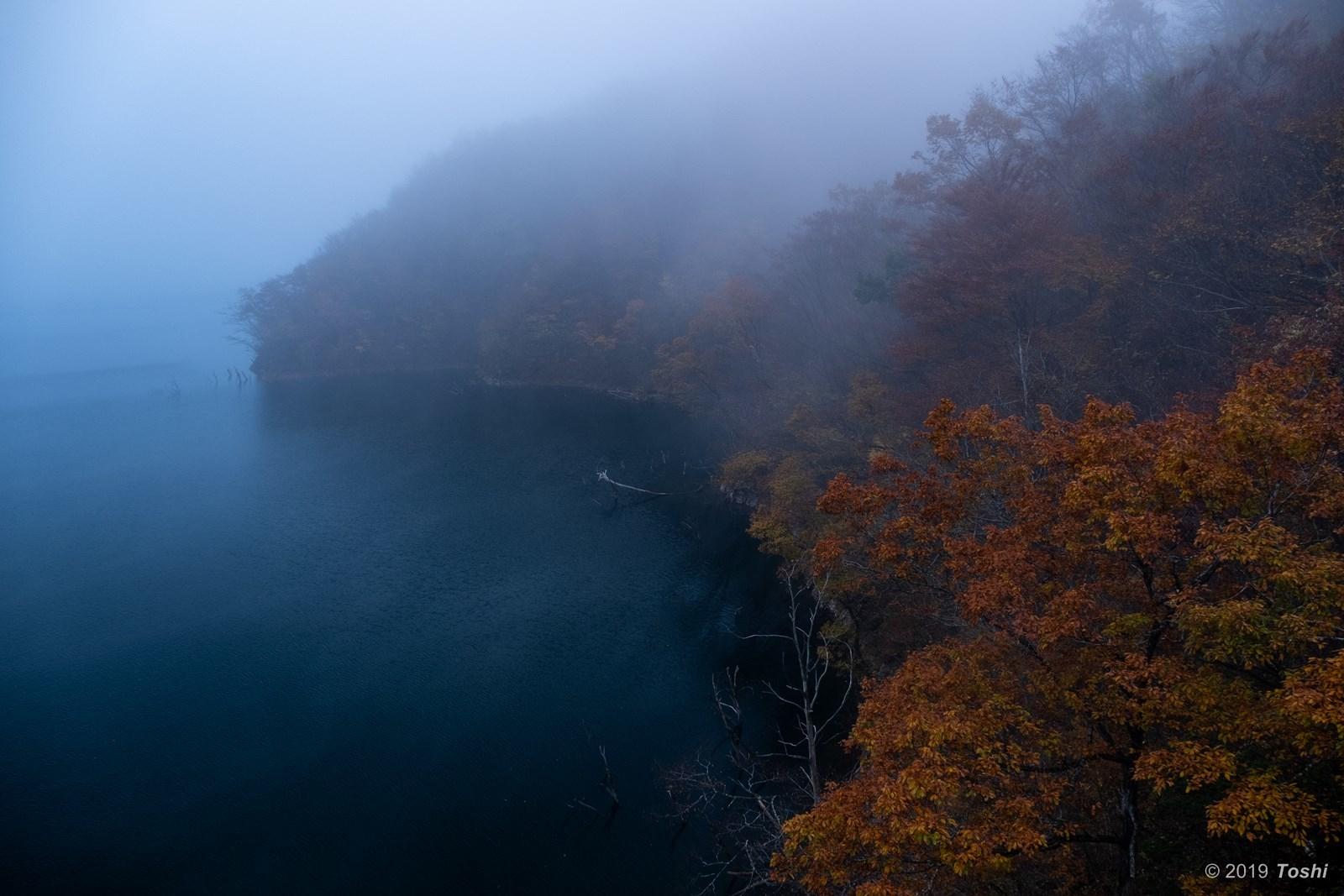 霧の徳山ダム 1_c0350572_23250158.jpg